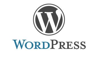 Maatwerk Wordpress plugins voor optimaal website beheer